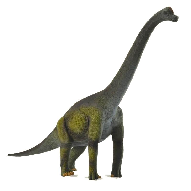 Dinosaur World Βραχιόσαυρος