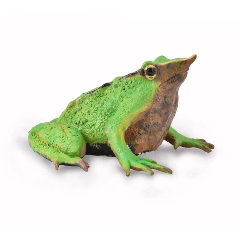 Collecta Ζώα - Βάτραχος του Δαρβίνου (88938)