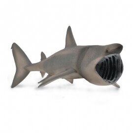Collecta Θαλάσσια Ζώα - Καρχαρίας Σαπουνάς - Προσκυνητής (88914)