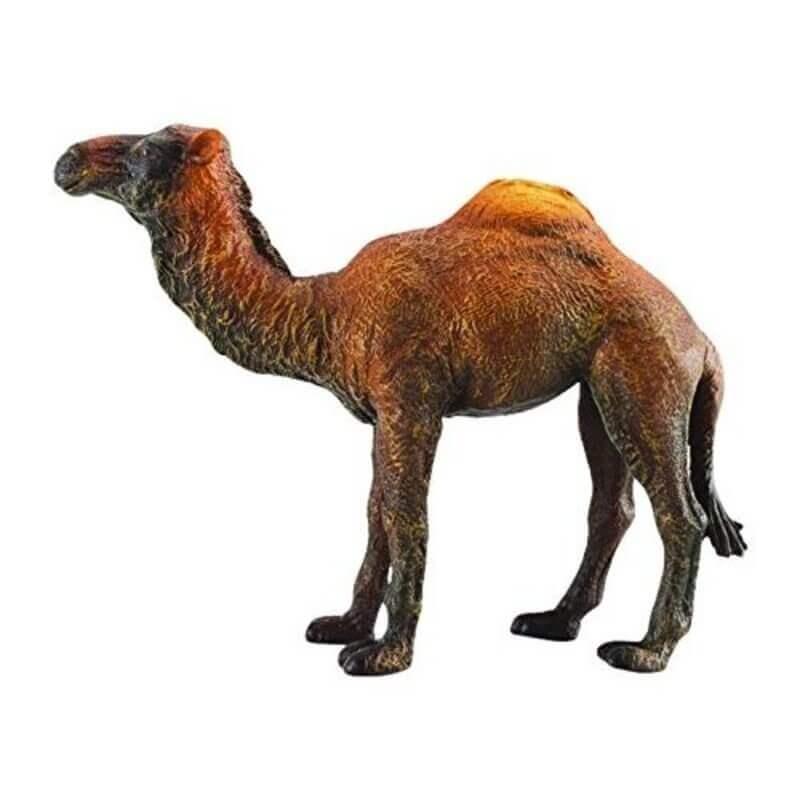 Collecta Ζώα Ζούγκλας - Καμήλα