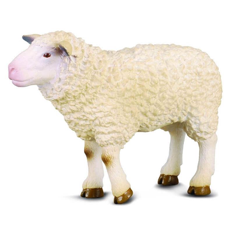 Πρόβατο - Collecta Ζώα Φάρμας (88008)