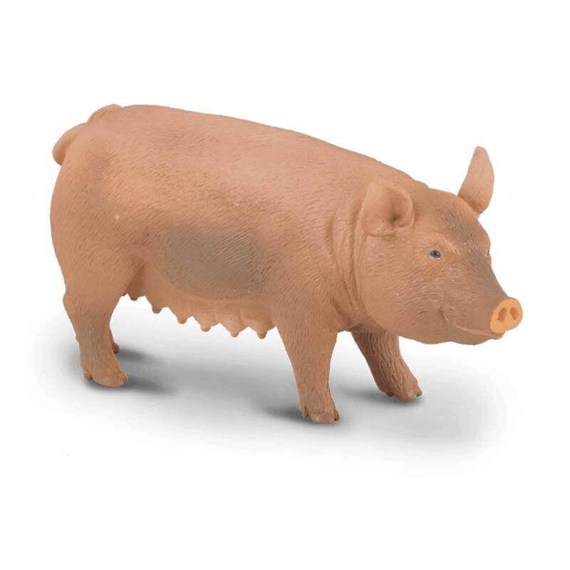 Collecta Ζώα Φάρμας - Γουρούνα